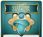 Nine Innovation Roles Customer Champion