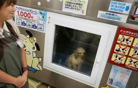 Dog Washing Machine - Japan