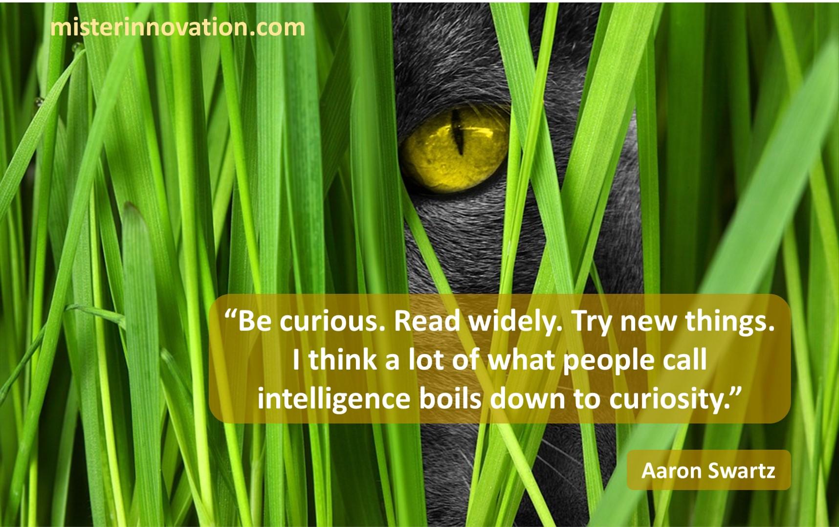Aaron Swartz Curiosity