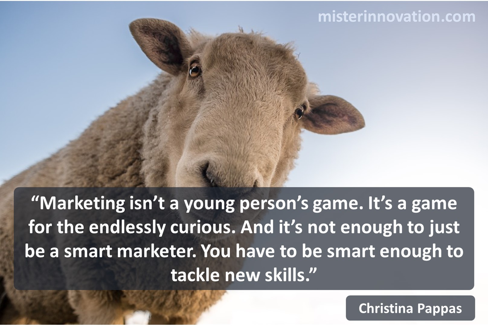 Christina Pappas Quote on Marketing Curiosity and New Skills