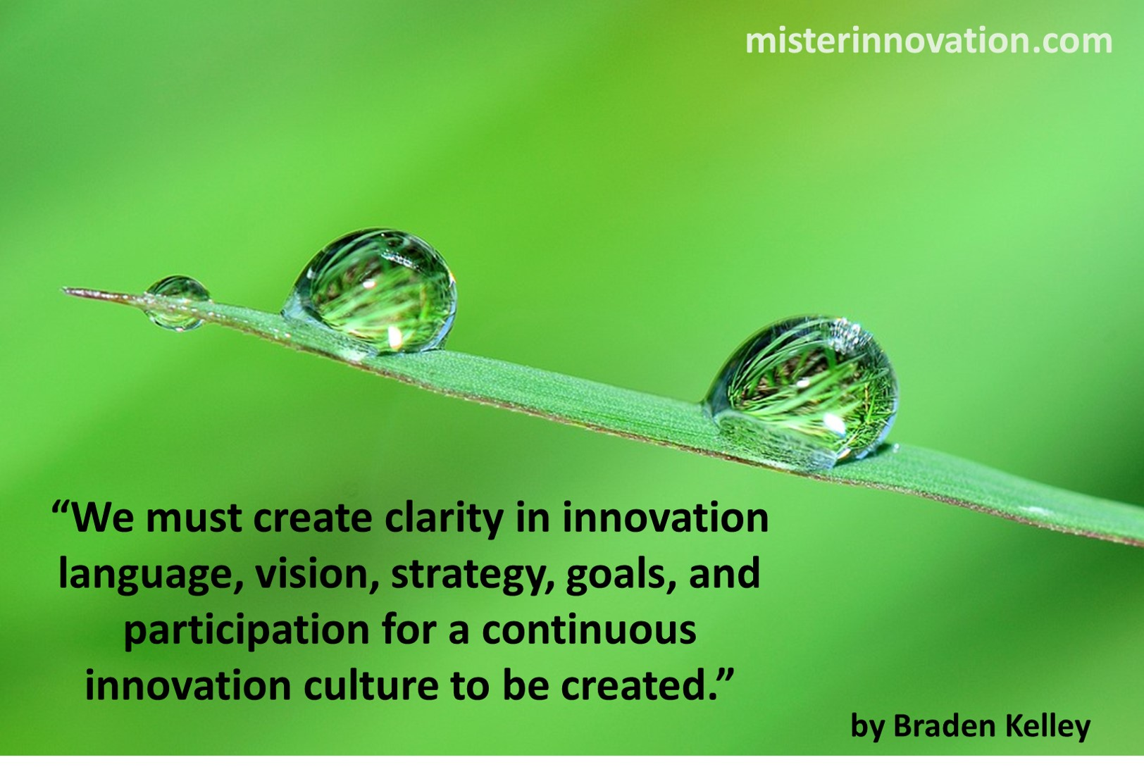 Quote on Clarity in Language Vision Goals from Braden Kelley