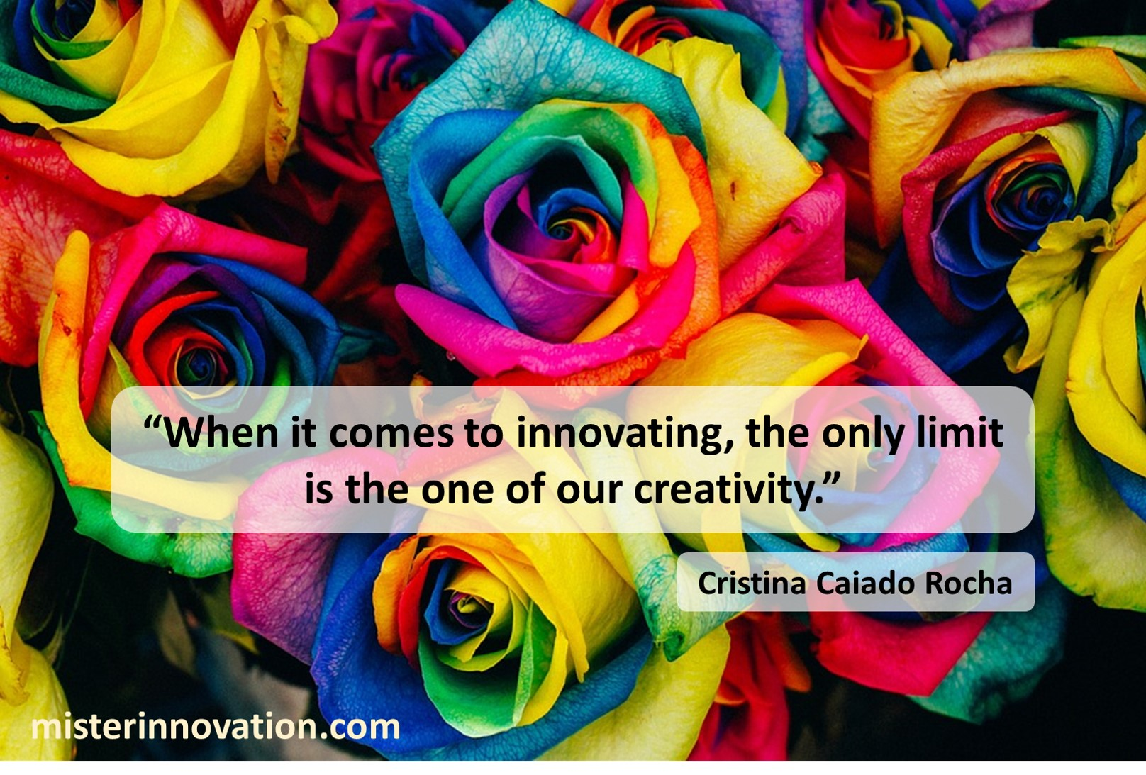 Cristina Caiado Rocha Quote on Creativity and Innovation