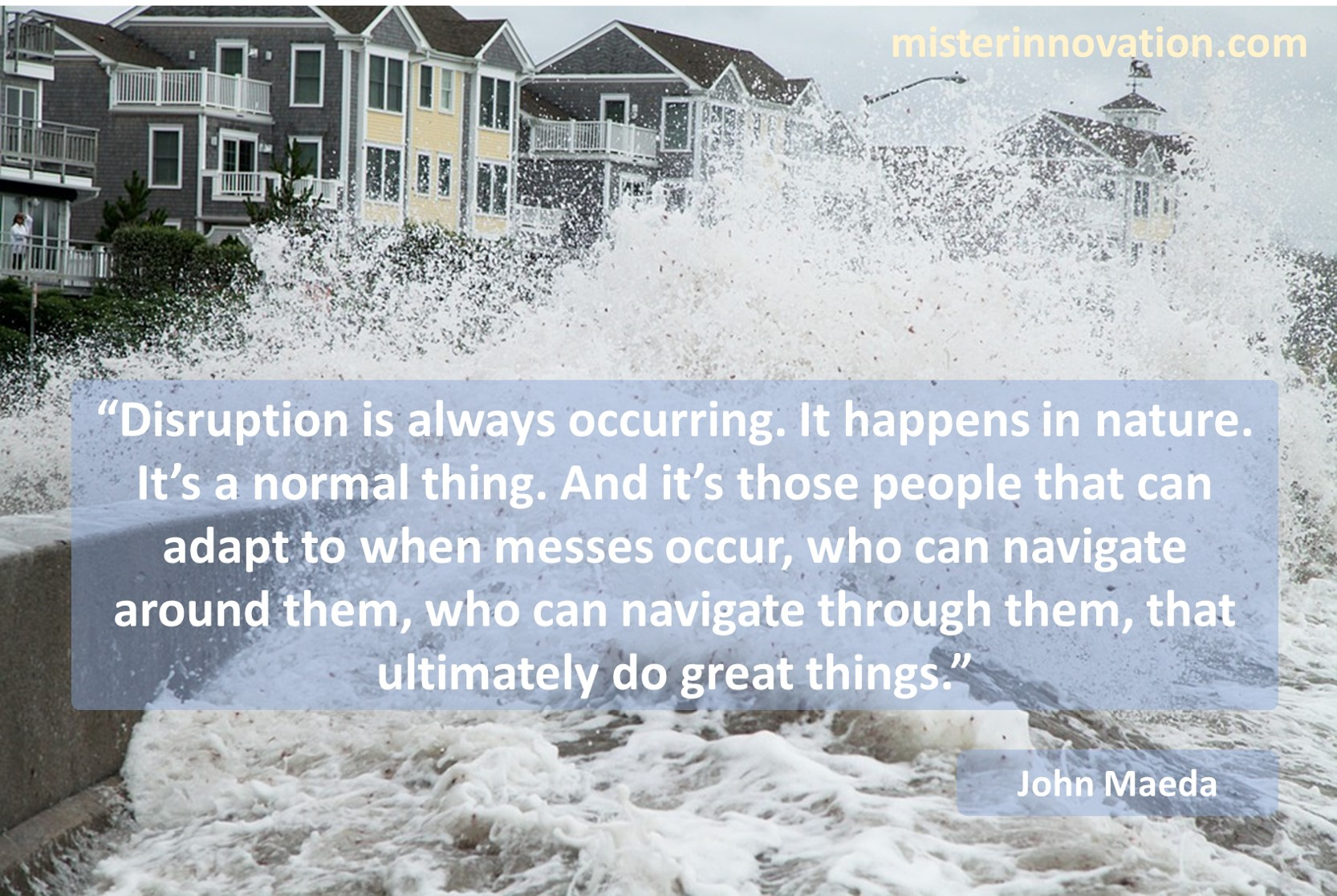 John Maeda Quote on Disruption and Adaptibility