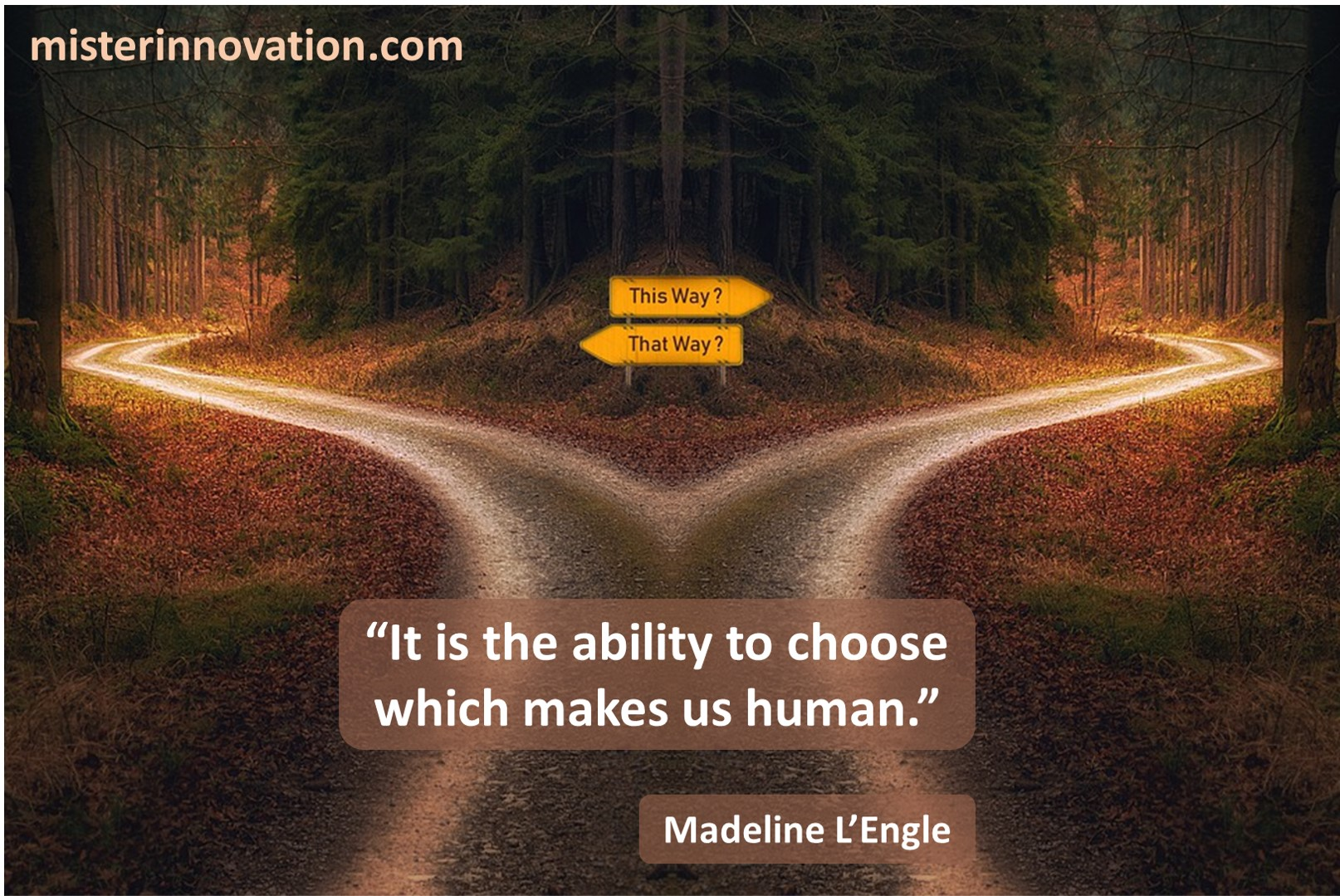 Madeline LEngle Choose