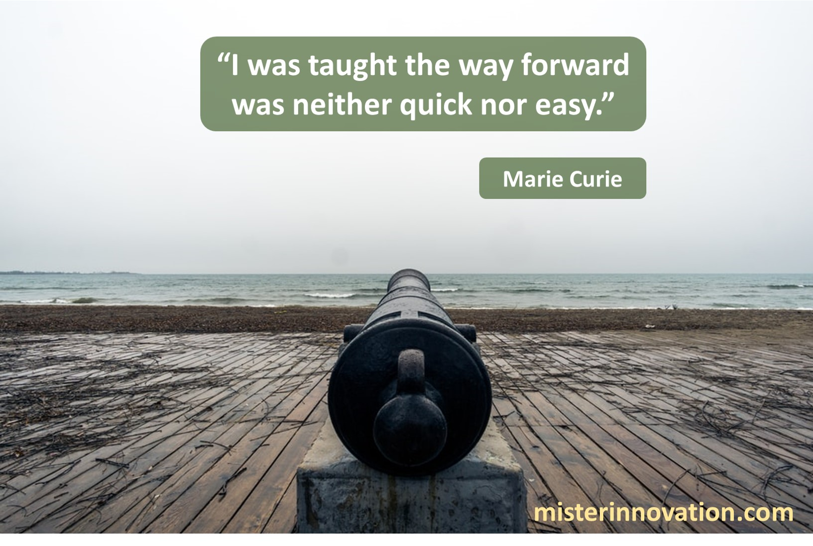 Marie Curie Way Forward