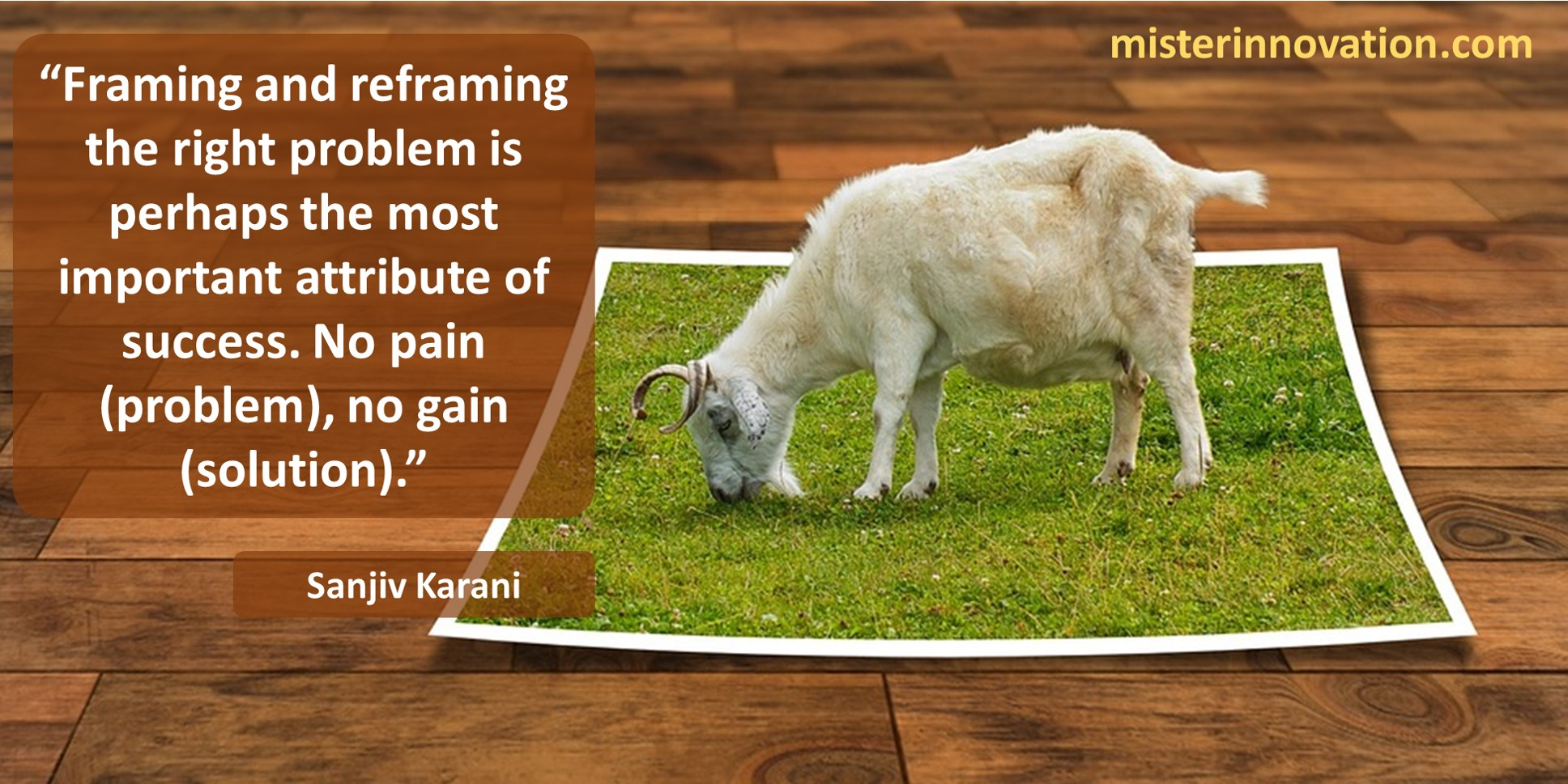 Sanjiv Karani Quote on Problem Reframing and No Pain No Gain