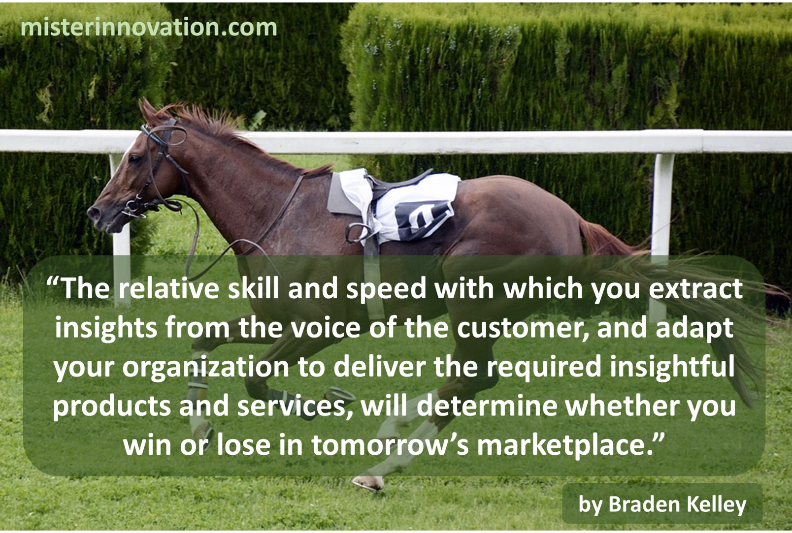 Skill and Speed of Insight Transformation Quote from Braden Kelley