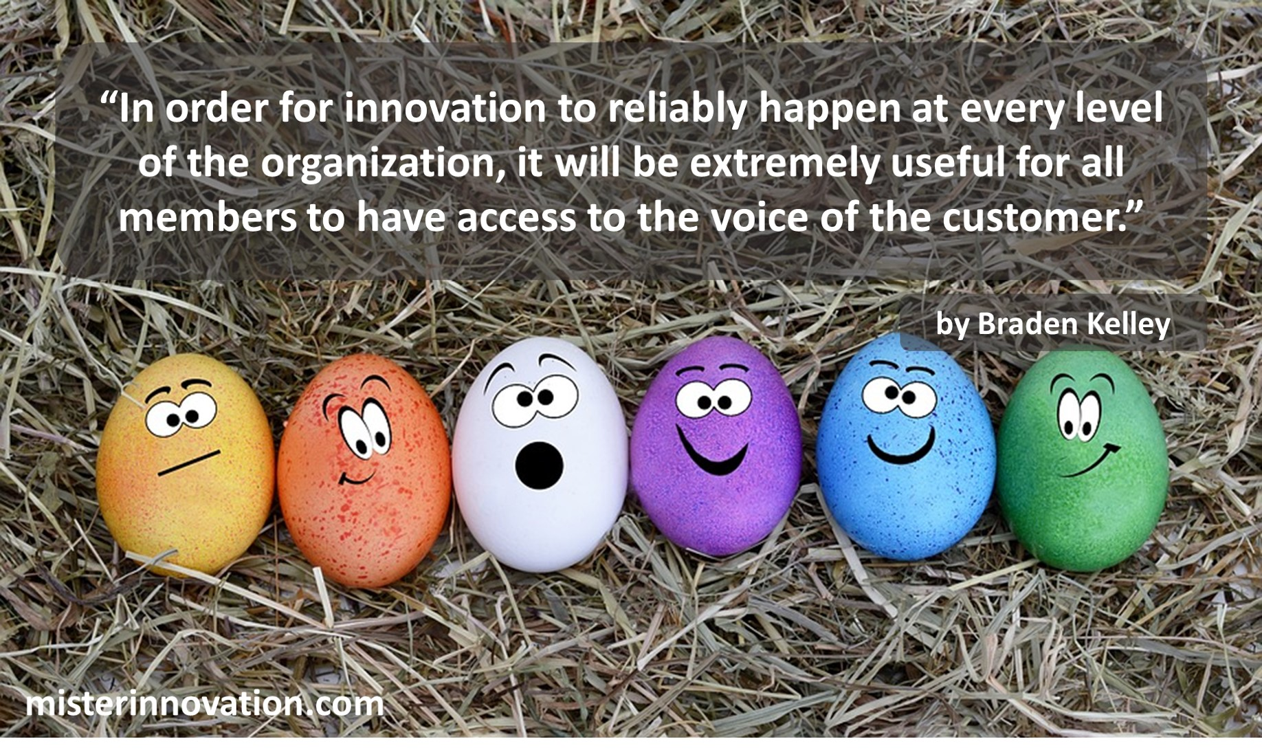 Voice of the Customer and Innovation Quote from Braden Kelley