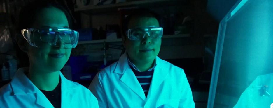 Coronavirus Salt Masks