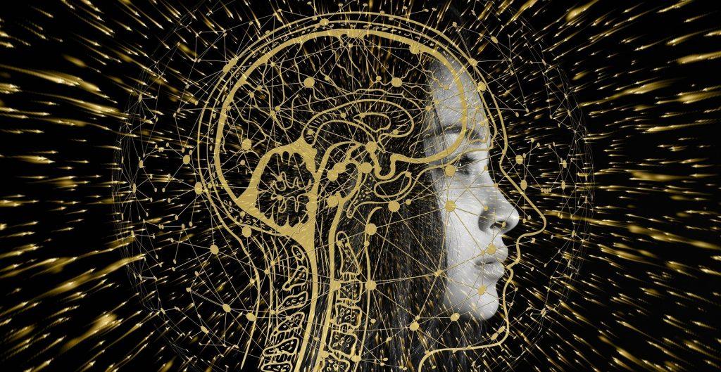 Quantum Human Computing