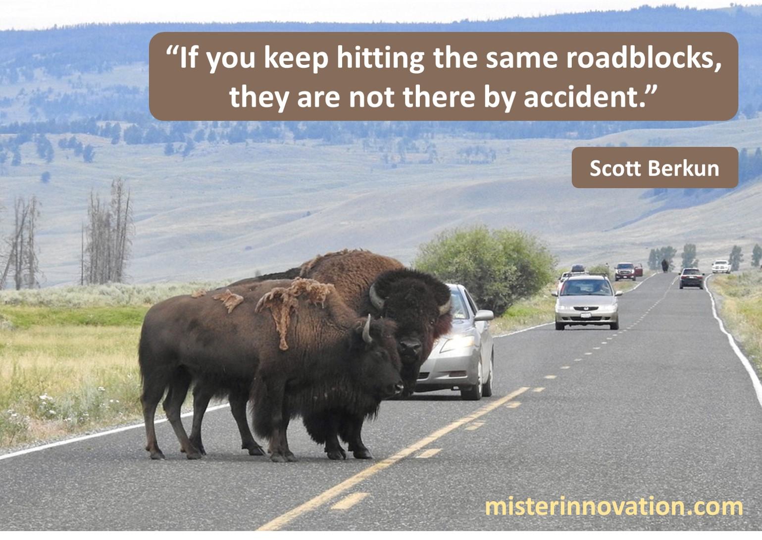 Scott Berkun Roadblocks